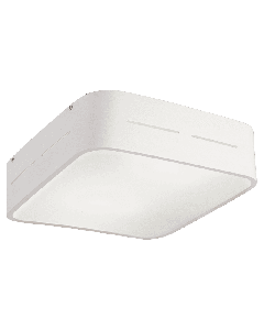 Πλαφόν Οροφής Δίφωτο 28*28 εκ. Γυαλί Λευκό σατινάτο / Βάση σε Λευκό Αλουμίνιο Viokef Terry 4104200